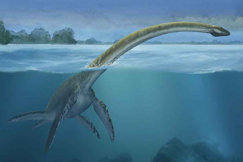 news-Nessie-Monster-site
